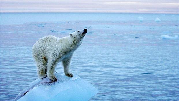 Cambiamento climatico le cause e i rimedi 2