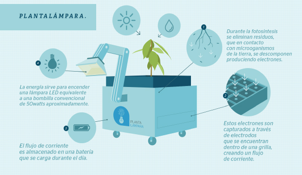 infografia_utec_plantalampara_plantas_que_dan_luz_a_nuevo_saposoa_