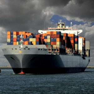 inquinamento navale