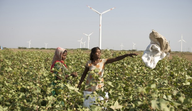 Energie rinnovabili india
