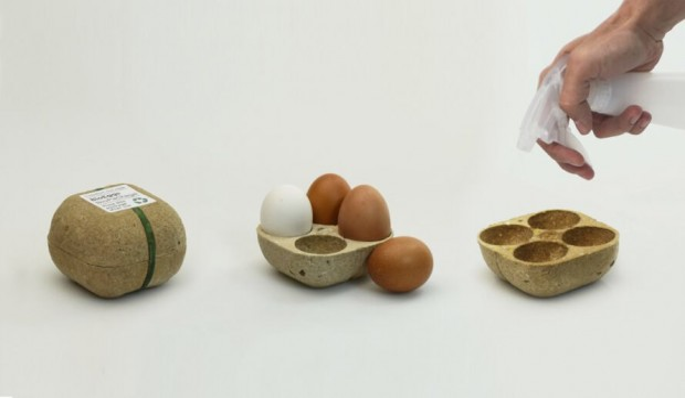 biopack contenitore uova
