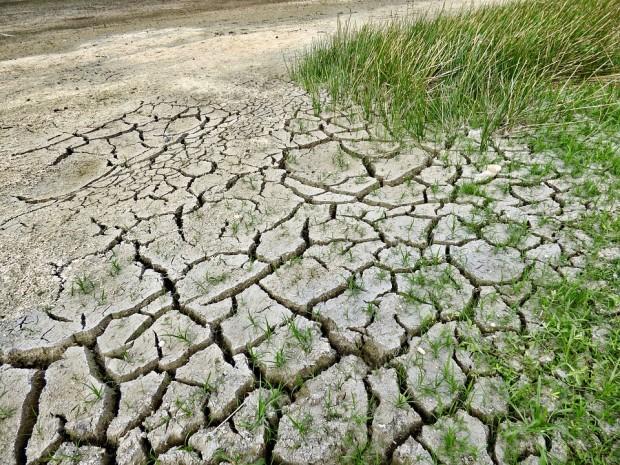 cambiamenti climatici suolo