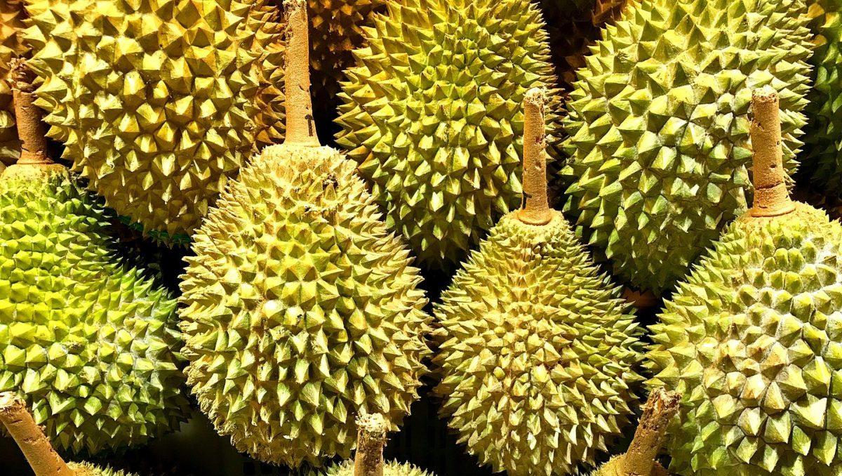 accumulo elettrico durian