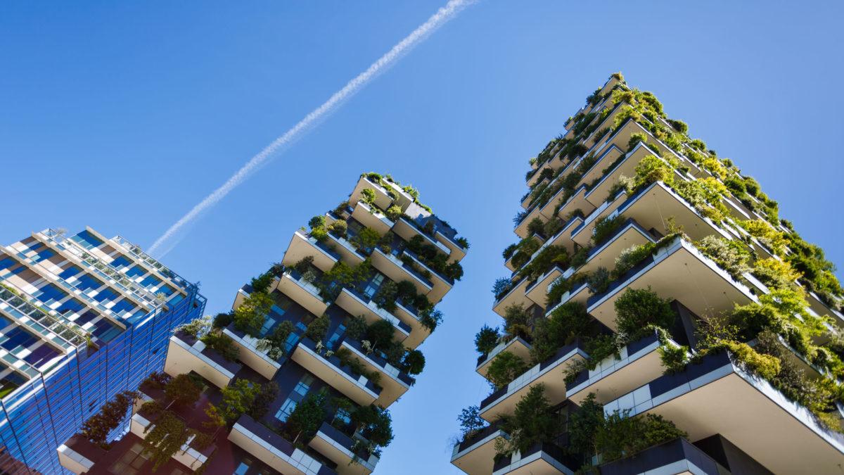 Bosco Verticale Appartamenti Costo bosco verticale: le città sul fronte della lotta al climate