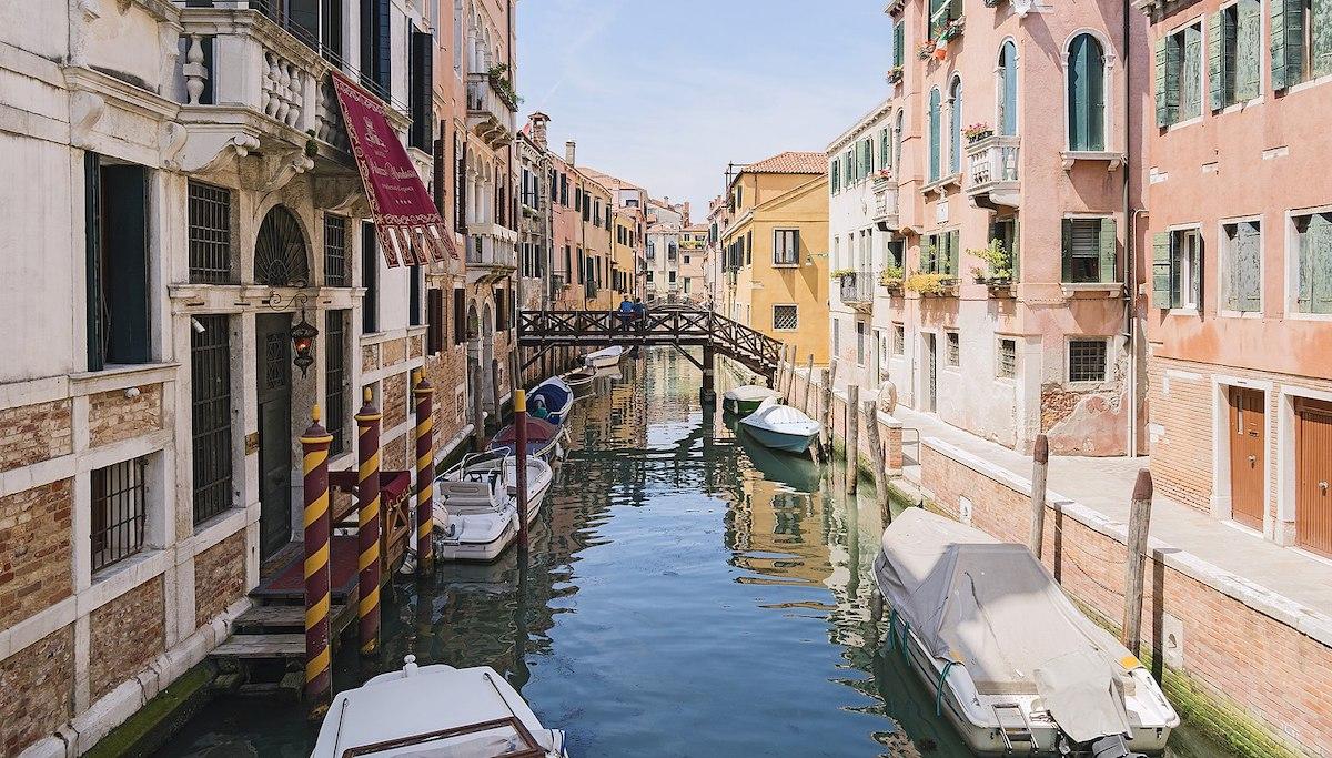 Laguna di Venezia: un ecosistema complesso e florido