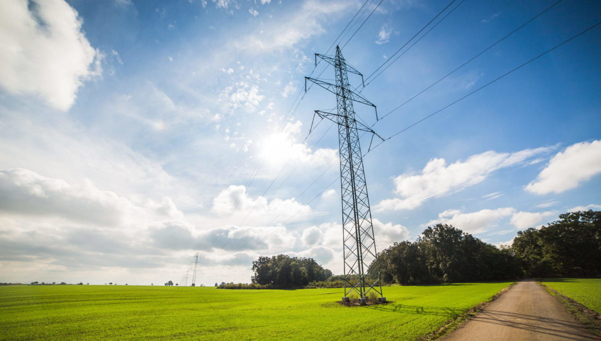 elettricità 2020