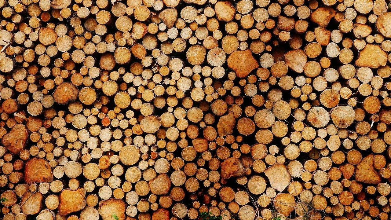 Biomasse italiane
