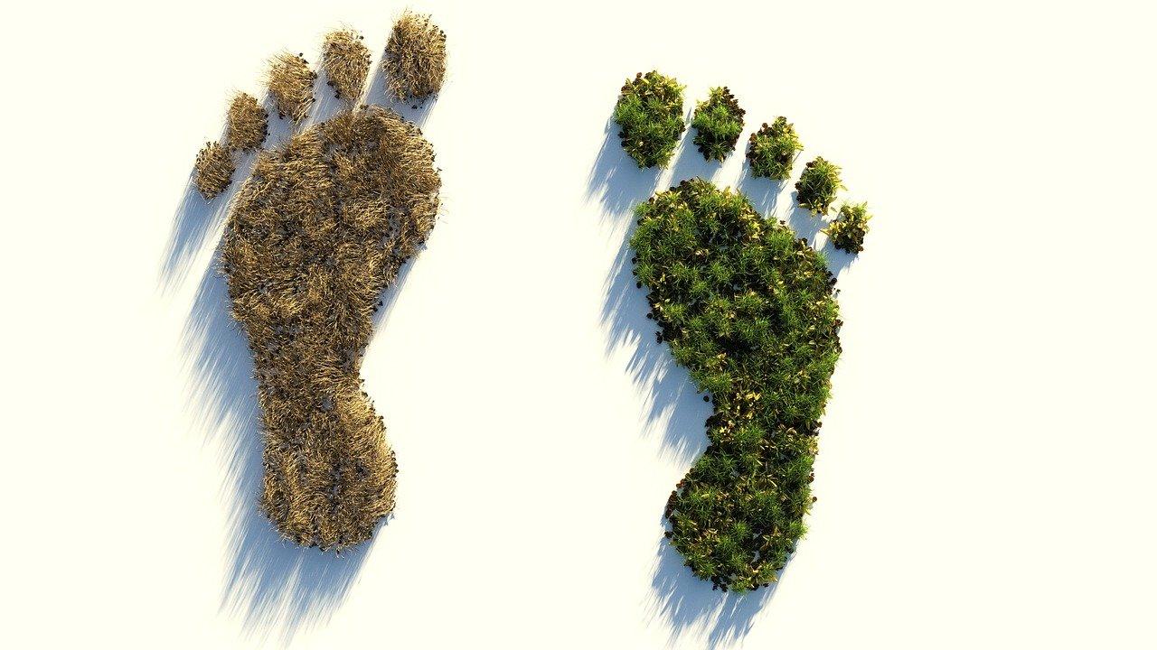 Economia con meno CO2