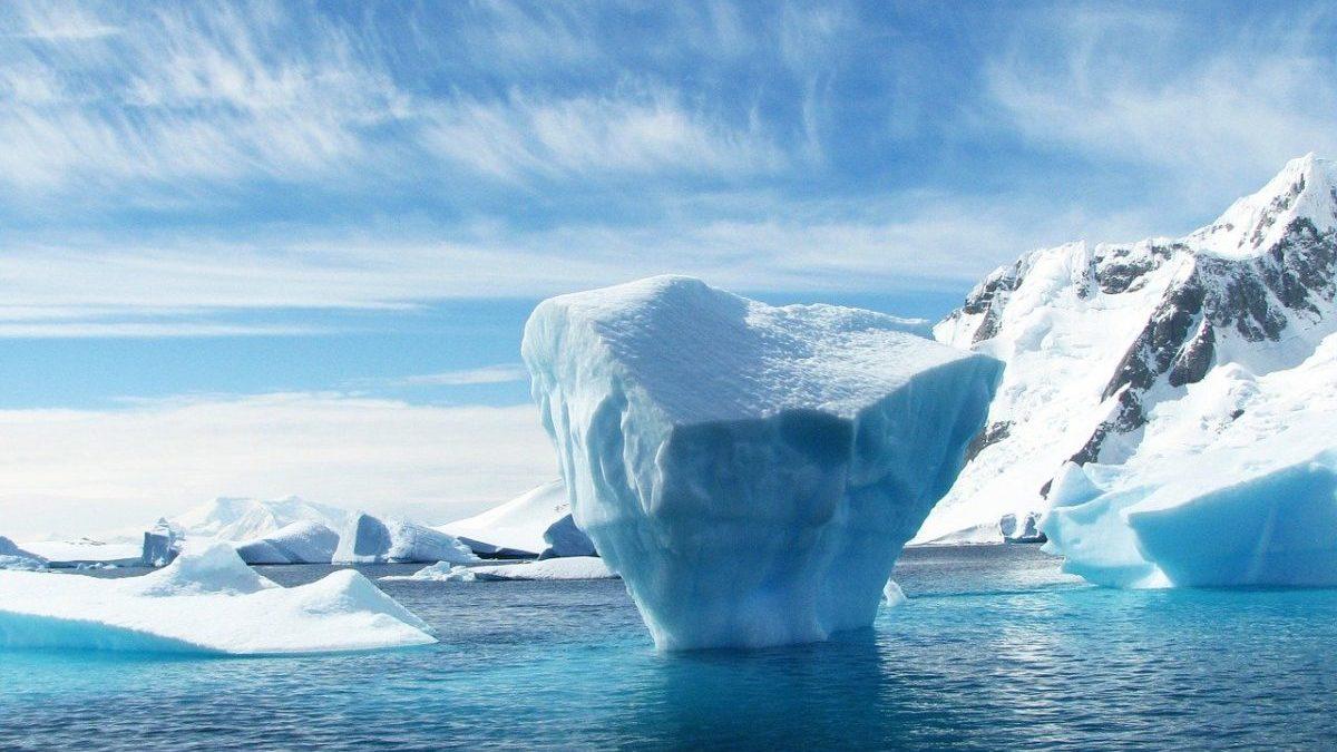 Artico