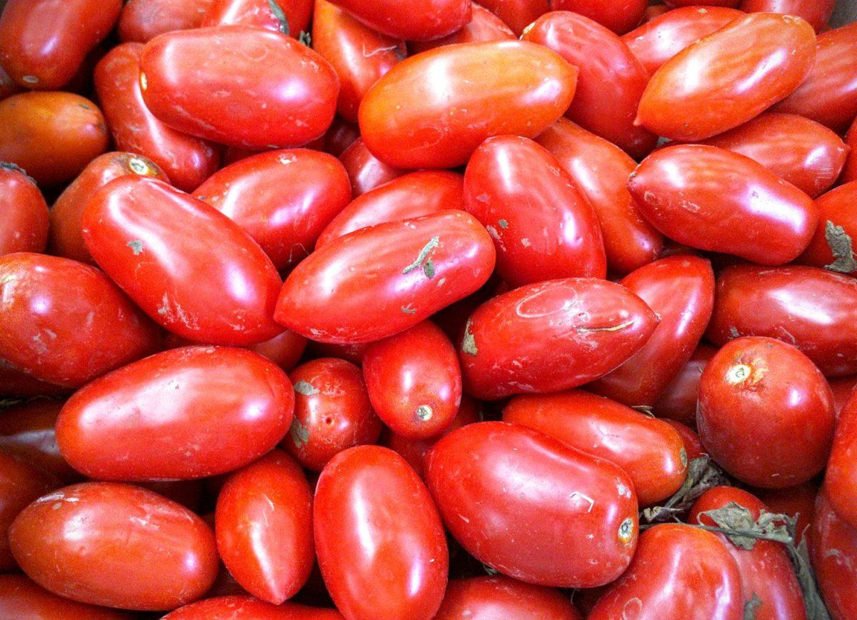 pomodoro di San Marzano