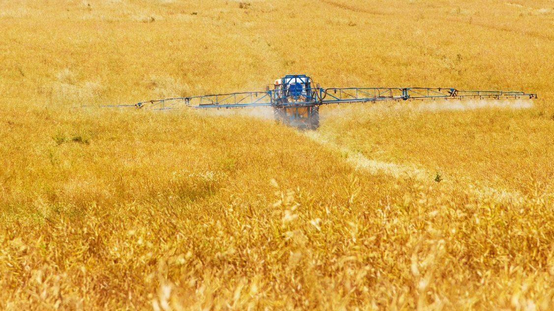 Pesticidi: Corte di giustizia UE, gli Stati possono bandire le sostanze dannose