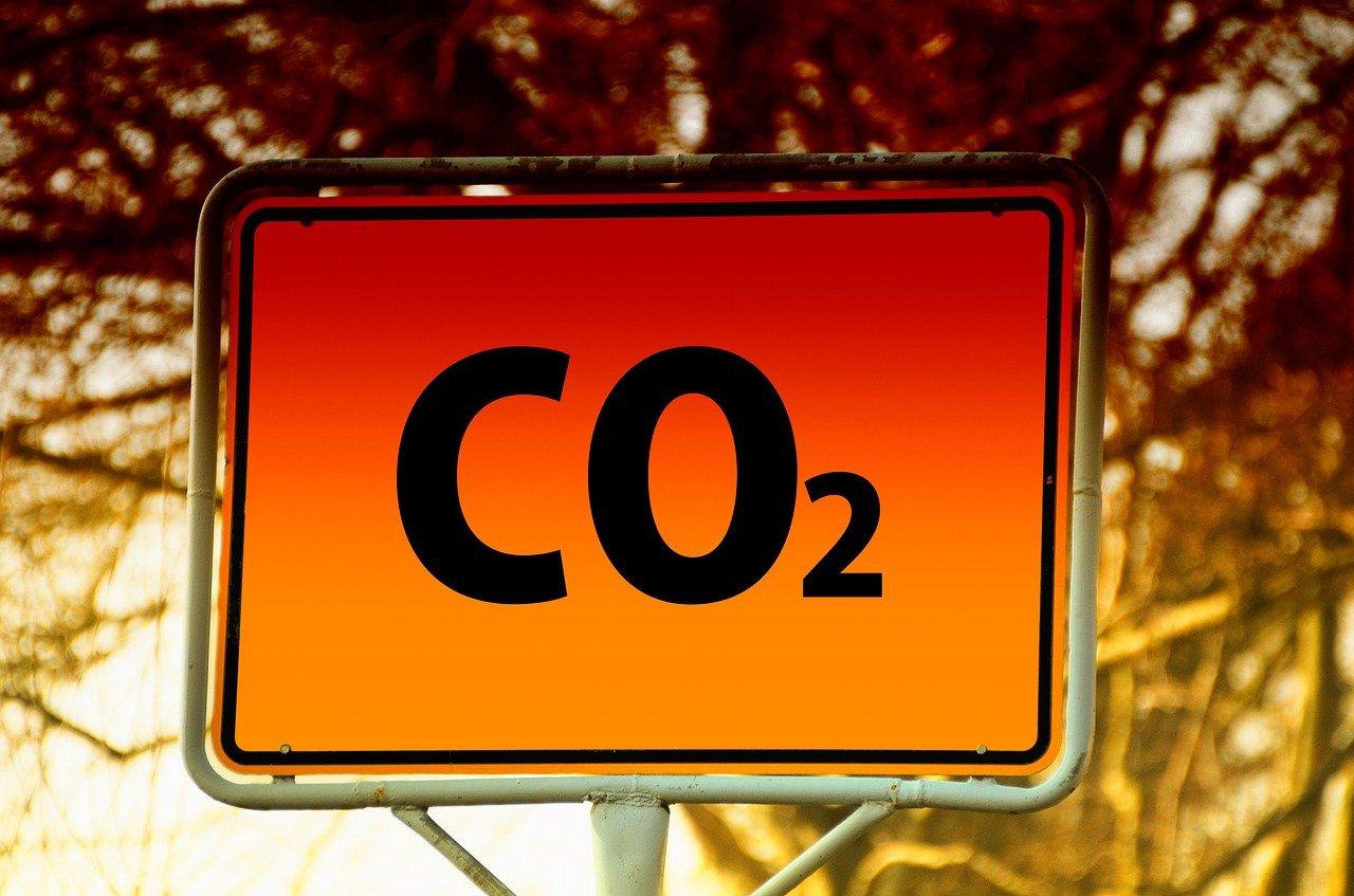 rimozione della CO2