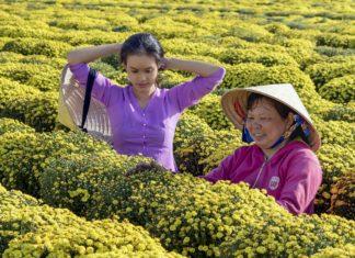 Giornata internazionale delle donne rurali