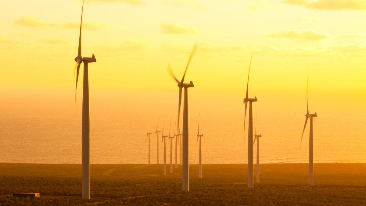 Mercato globale del carbonio