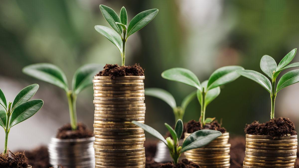 Finanza verde: la BEI dice addio anche al gas