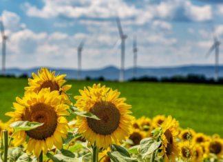 Rinnovabili in UE: arriva il sorpasso sulle fossili nel mix elettrico
