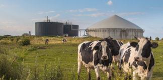 Impianti a biogas agricolo