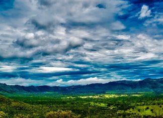 Deforestazione: sono 57 le leggi cambiate da Bolsonaro durante il Covid