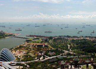 Elettrocarburanti: Singapore punta tutto sull'ammoniaca per il comparto navale