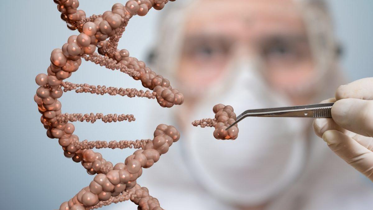 Nuovi Ogm: le lobby biotech all'assalto di Bruxelles