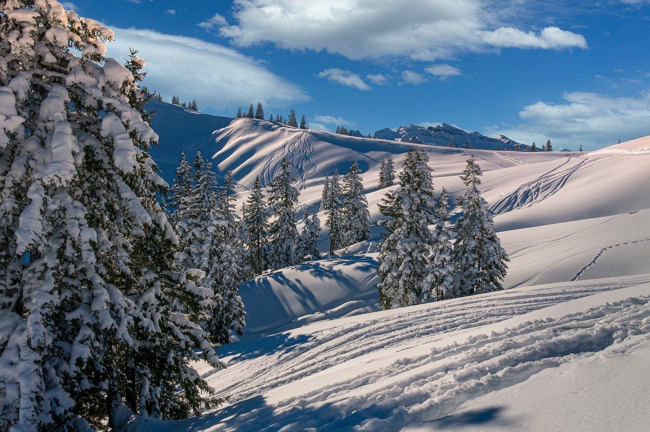 cambiamenti climatici neve