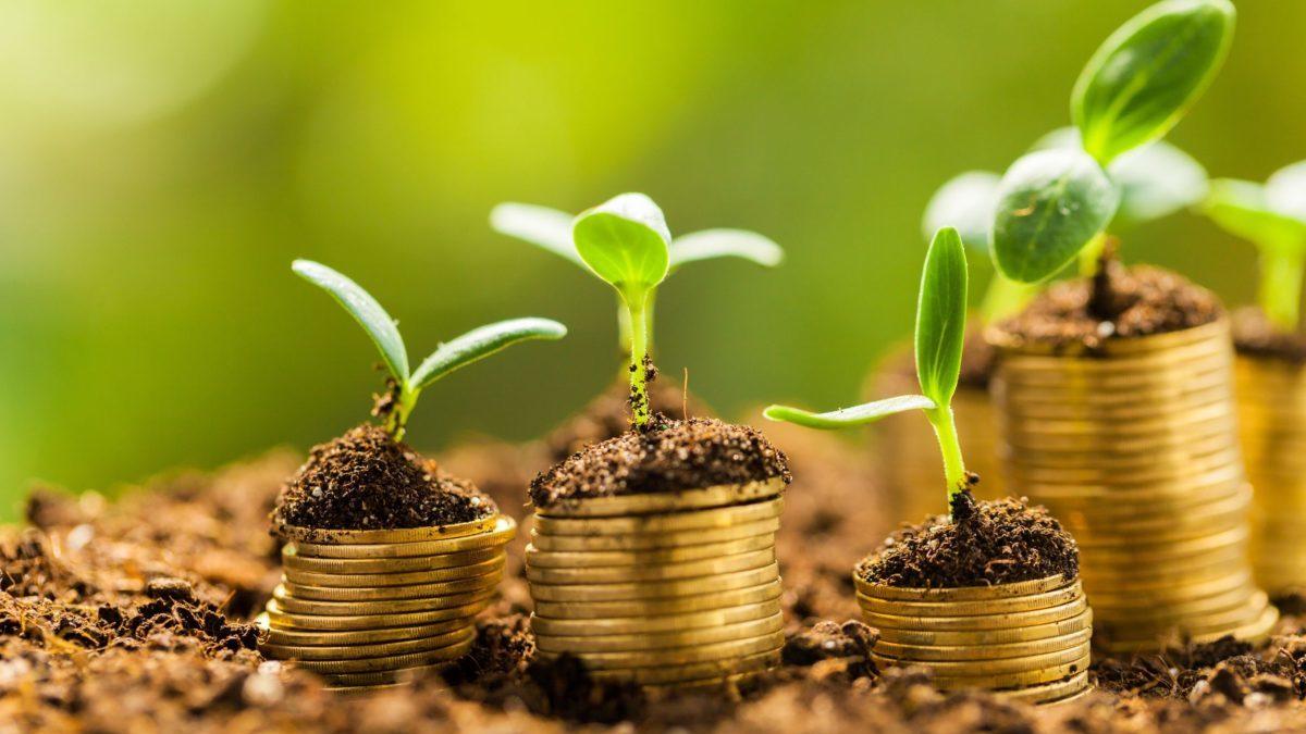 Finanza sostenibile: tanti annunci ma poca trasparenza, dice CDP