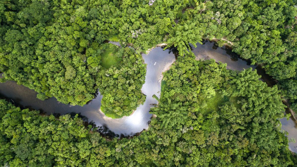 Bolsonaro vuole 1 miliardo l'anno per non distruggere l'Amazzonia