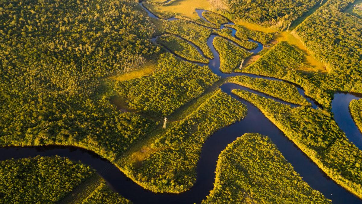 Deforestazione, i negoziati USA-Brasile sull'Amazzonia rallentano