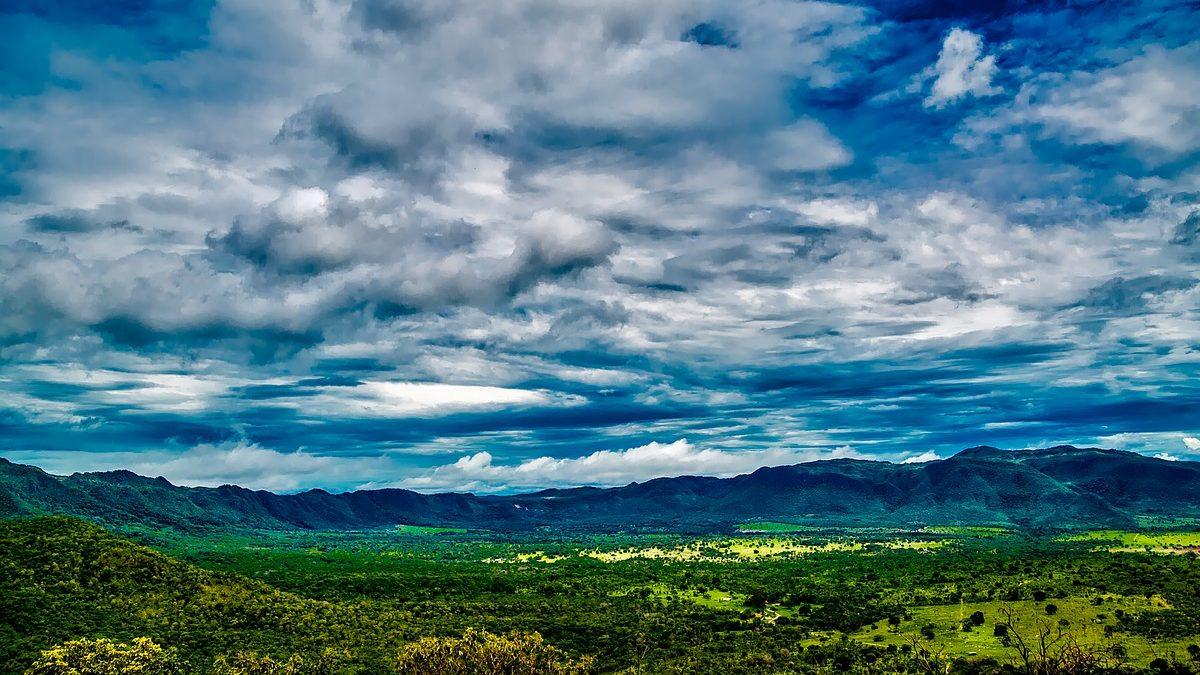 Deforestazione dell'Amazzonia: gli USA fanno un favore a Bolsonaro
