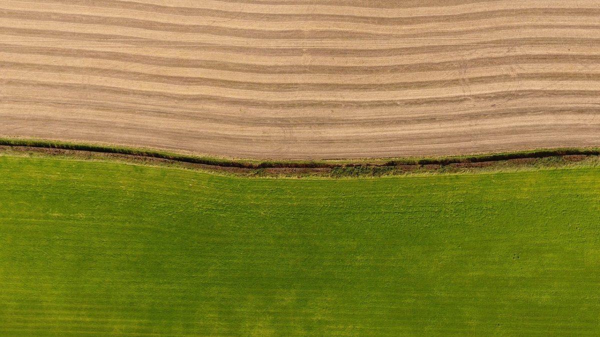 Transizione ecologica dell'agricoltura, 12 punti per ripartire