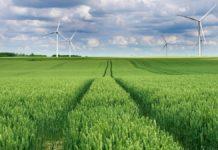 Transizione energetica: l'impatto della nuova legge sul clima UE