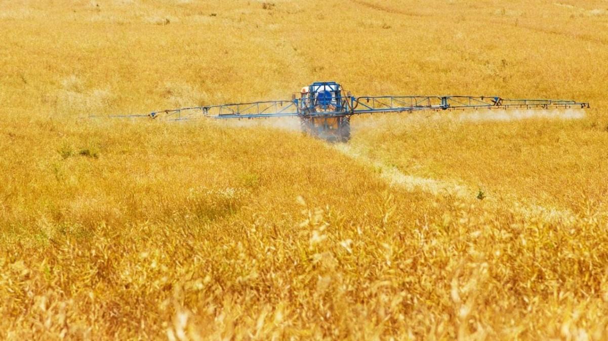 Pesticidi neonicotinoidi: la Corte di giustizia UE conferma il bando