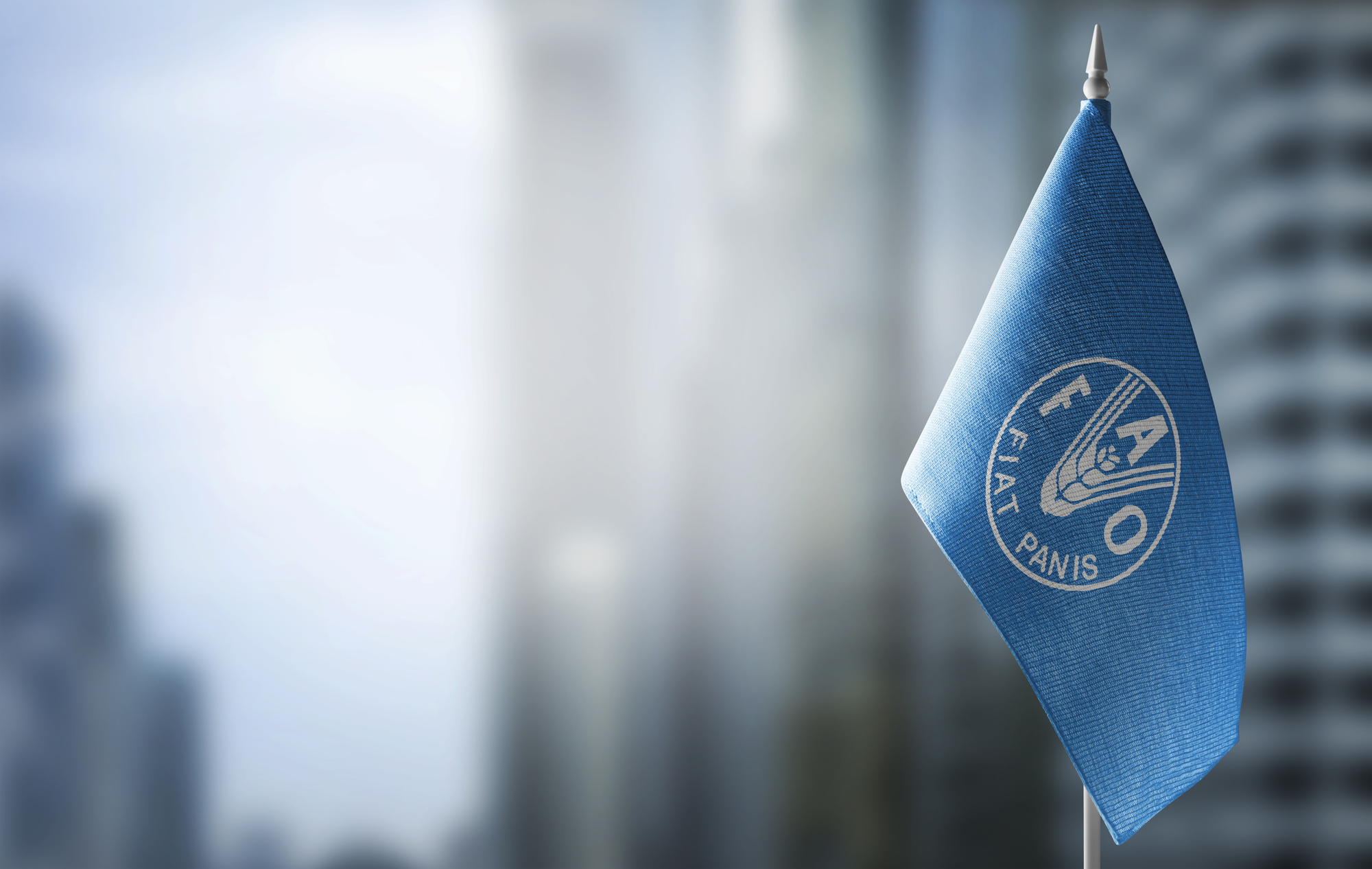strategia nutrizionale della FAO