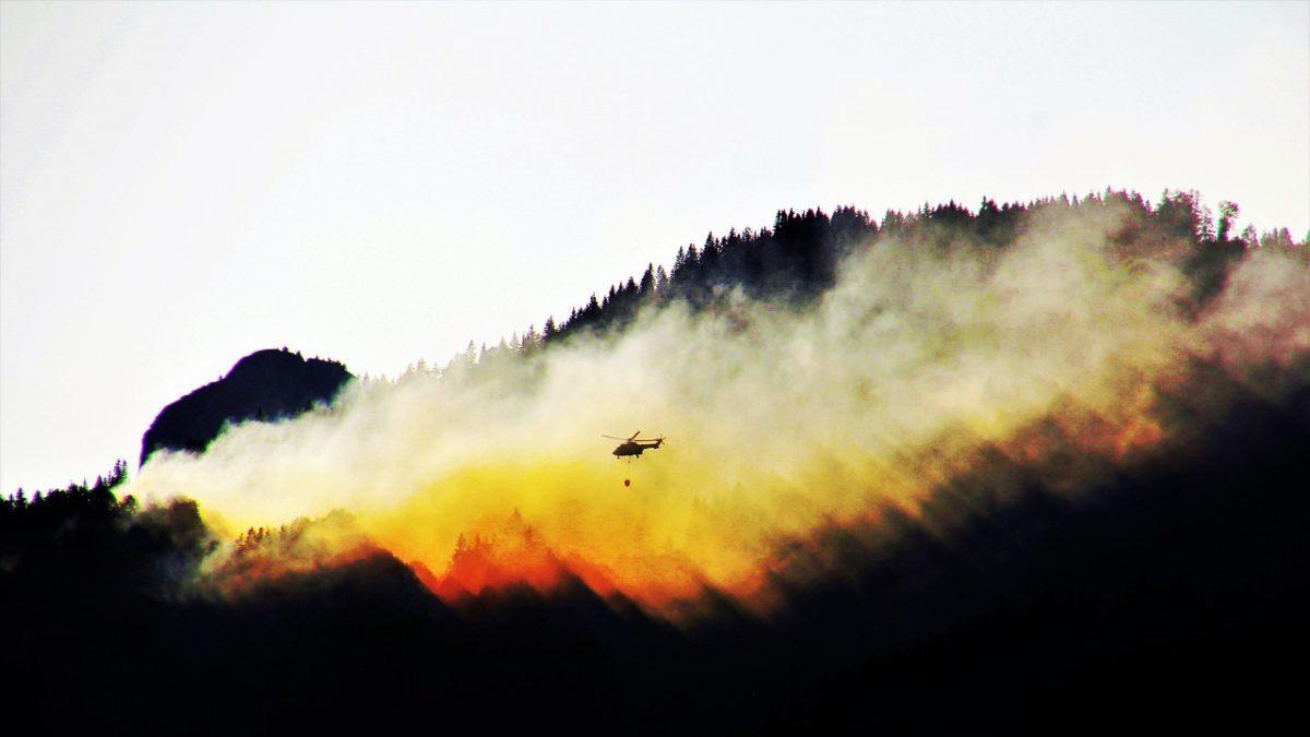 Stagione degli incendi: la California si prepara a un'estate rovente