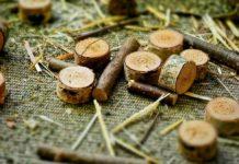 Carbon offset: le falle delle compensazioni di carbonio