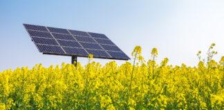 Fotovoltaico e biodiversità