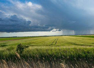 Adattamento ai cambiamenti climatici: il Consiglio UE approva la nuova Strategia