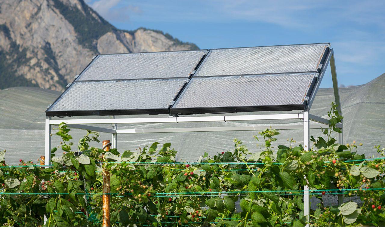 pannelli solari trasparenti