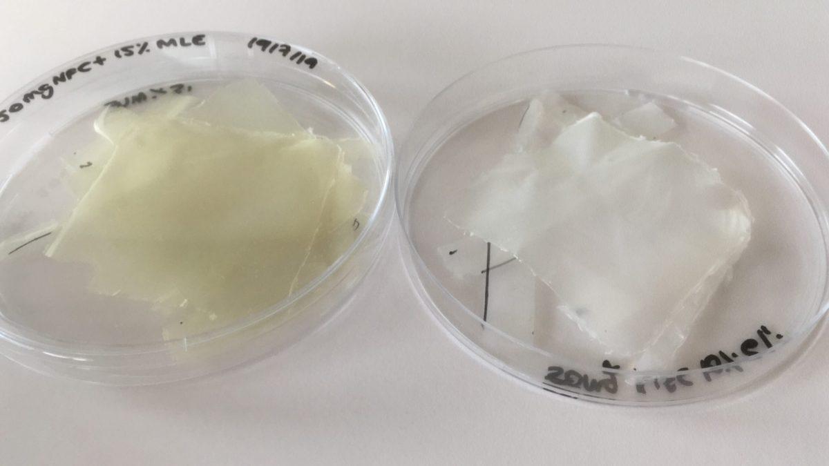 plastica bioattiva