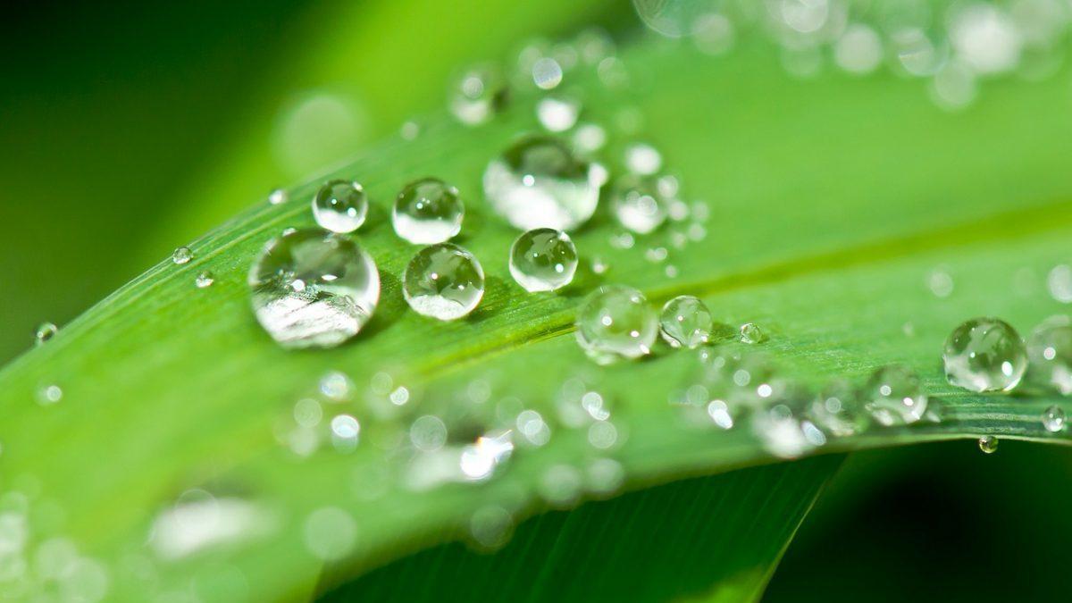 Idrogeno verde: la decarbonizzazione inizia in raffineria