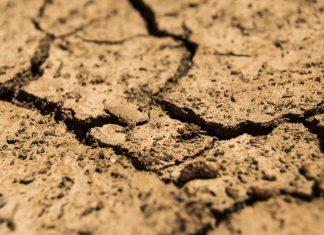 Siccità in Europa: la mappa futura di un continente assetato