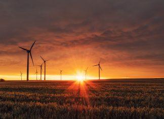 manifesto dei giovani per il clima