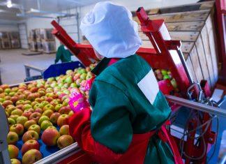 brexit sicurezza alimentare